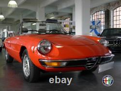 Spare Wheel Compartment Reserveradwanne SPIDER Alfa Romeo 105 115 62-93 Gt Gta